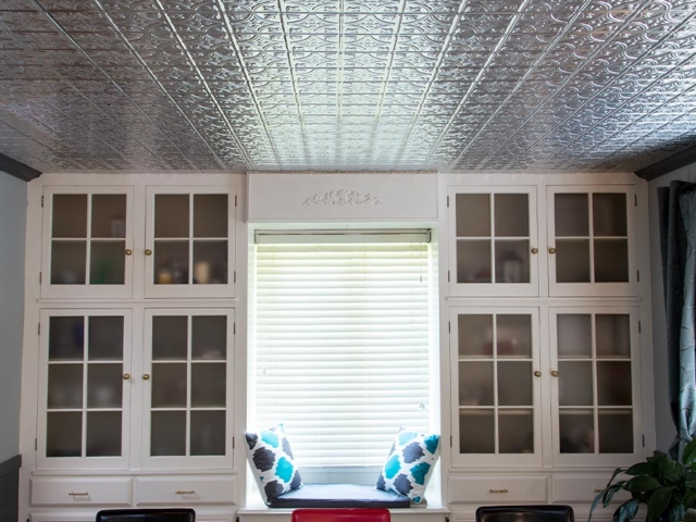 Traditional 1 ceiling in Brushed Aluminum