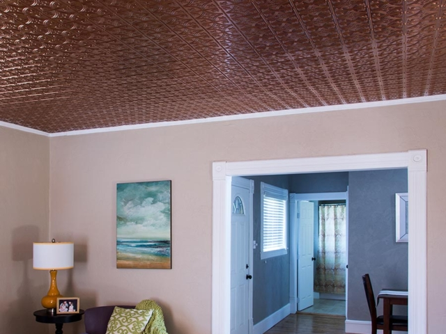 Traditional 1 ceiling in Oil-Rubbed Bronze